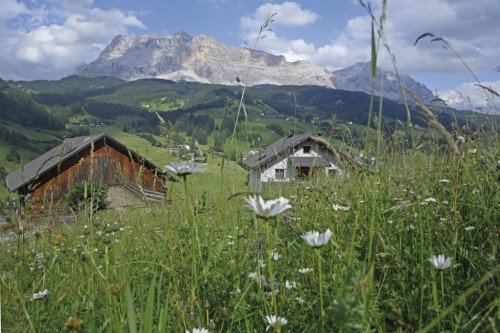 Rural idyll during your farm holiday in the Dolomites